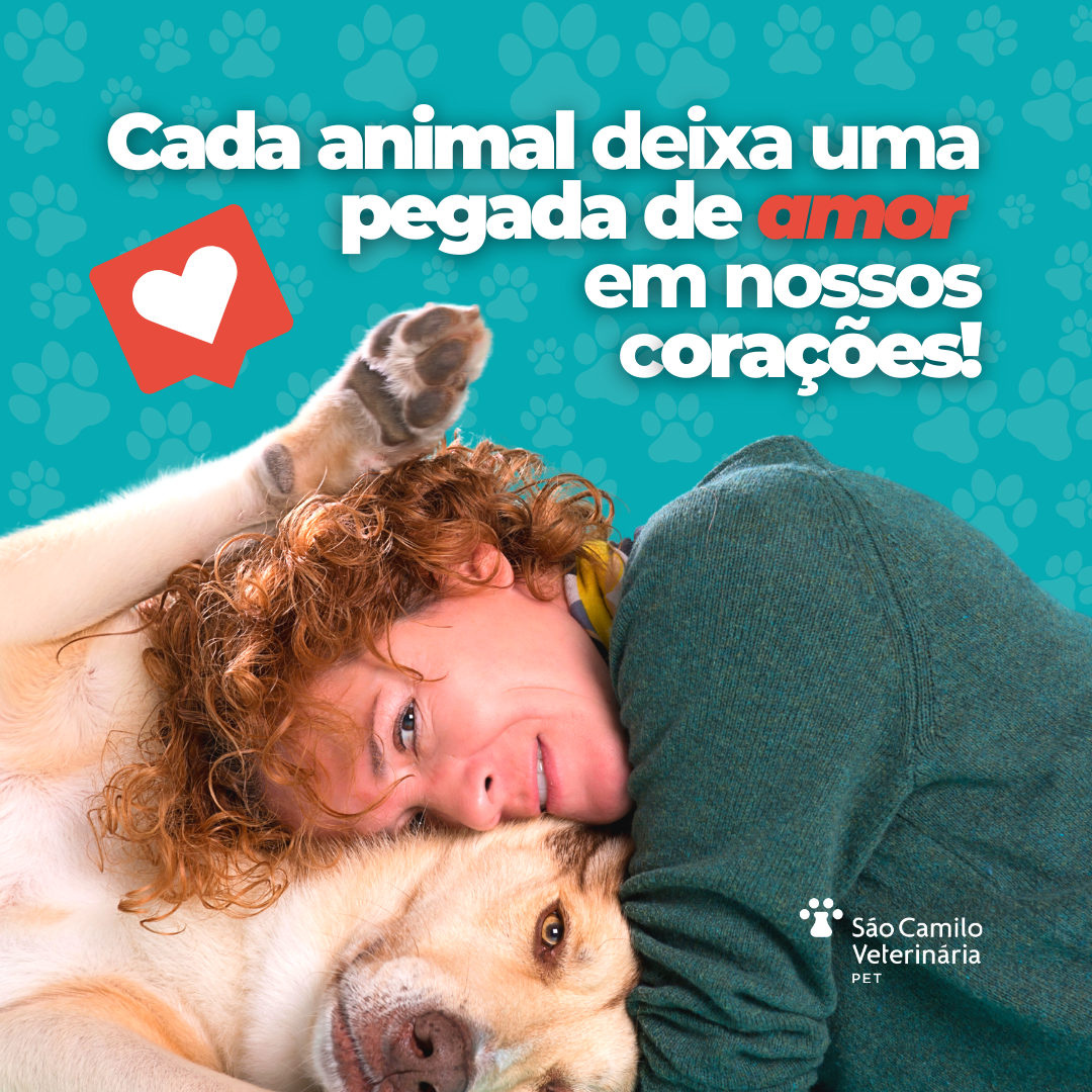 Diagnóstico Veterinário com Amor!